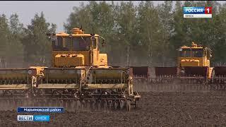 Посевная кампания в Омской области вышла на финишную прямую
