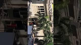 بالفيديو.. حادث غرق مركب quotجولدز جيمquot فرع الجيزة 2     -