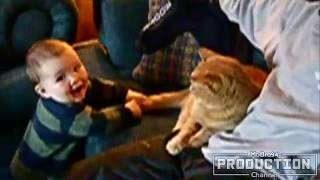 MOST Crazy Cats Annoying Babies, If You Laugh You Lose Challenge, Funny Cats Videos by Green Diamond