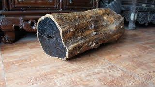 """Khám phá top 10 loại gỗ """"đắt"""" nhất trên thế giới!"""