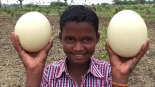 Cooking The world's Biggest Egg - Ostrich Scrambled Eggs with Vegetables - Ostrich Egg Podimas