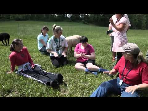 Bringing Nature To Children With Disabilities