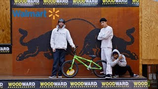 $80 Walmart BMX Bike VS Woodward