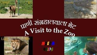 Marathi and English Zoo Animals | Marathi to English to Marathi for Kids | M2E2M4Kids