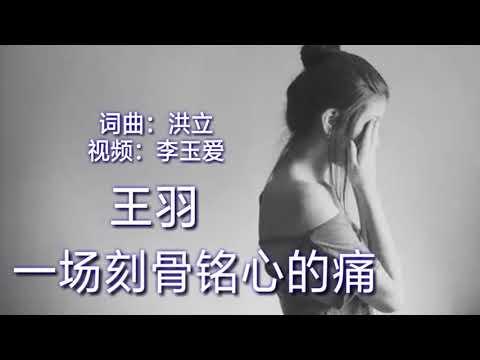 《一场刻骨铭心的痛》 演唱:王羽