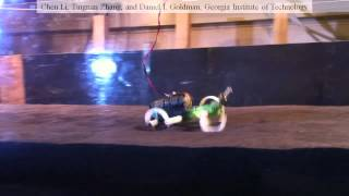 Legged locomotion on poppy seeds