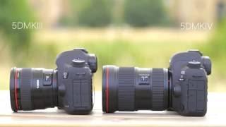 Canon EOS 5D Mark IV vs 5D Mark III