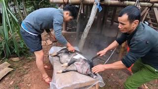 Tết Dân Tộc Thái Tây Bắc Tập 5 | M.ổ Lợn Ăn Tết ✓ Poòng Văn Quỳnh