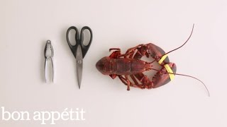 How to Take Apart a Lobster