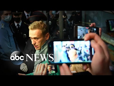 Alexei Navalny detained after landing in Moscow