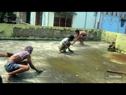 Quality waterproofing service in Kolkata