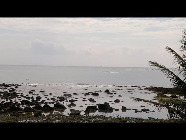 杉原護漁區改收費 禁區外濫捕魚網卡珊瑚礁
