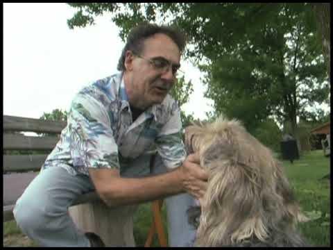 DOG WALKER & PUP BUTT RUBS