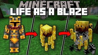 Minecraft LIFE AS A BLAZE MOD / FLY AROUND AS A BLAZE KING AND CONQUER THE NETHER!! Minecraft