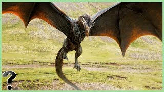 What If Wyvern's Were Real?