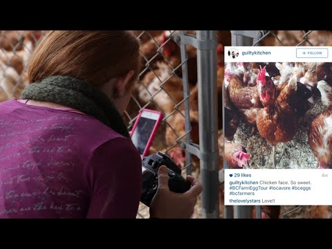 Go behind the scenes BC Egg farms.