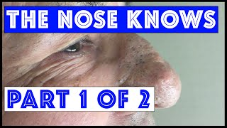 The Nose Knows: Part I