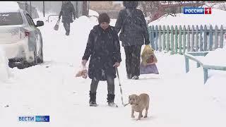 В Омске за день выпало рекордное количество осадков