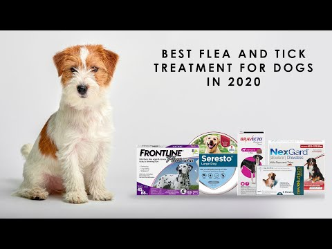 Best Flea And Tick Treatments For Dogs In 2020 - YouTube - CanadaPetsSupplies.com