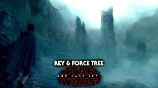 Star Wars The Last Jedi Trailer - Rey & The Force Tree Explained