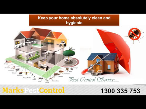 Safest Pest Control Solutions in Melbourne