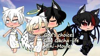 gay chihuahua