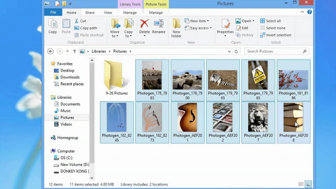 How to Transfer Pictures From Windows Photo Gallery to a Flash Drive : Photo & Video Editing ...