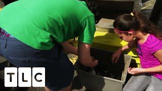 Parents Make Kids Rummage Through Vacuum Bag For Change | Extreme Cheapskates