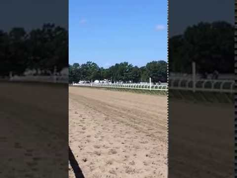 Paz The Bourbon working on the turf at Saratoga