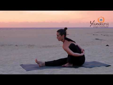 Marichyasana | Sage pose by Allisone Eaton