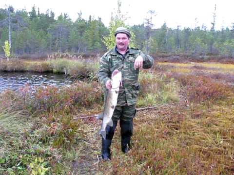 Пипец!!! Рыбалка в Сибири!!!