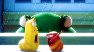 LARVA - THUNDER STORM   Cartoon Movie   Cartoons For Children   Larva Cartoon   LARVA Official