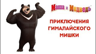 Маша и Медведь - Приключения Гималайского Мишки 🐻 Все серии подряд! 🎬