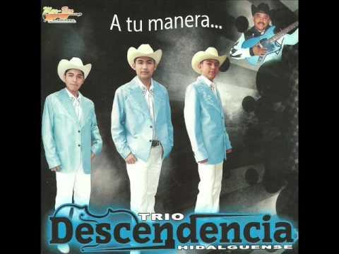 Popurri De Cumbias-Trío Descendencia Hidalguense