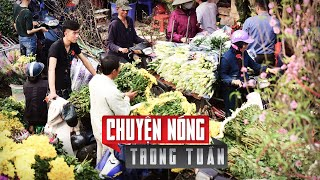 Tết ở Việt Nam năm nay có gì mới lạ?