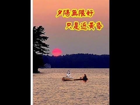 蔡敬璘古箏獨奏----痴痴的等-------陶秦作詞..王福齡編曲