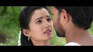 Sriramudinta Srikrishnudanta theatrical trailer..