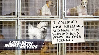 Extreme Dog Shaming: Russian Collusion, Pooping Twice