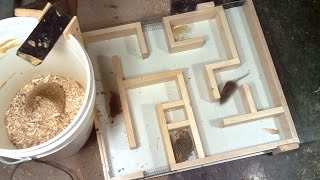Mouse trap maze experiments