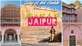 Chơi nổi! Cả thành phố này toàn sơn MÀU HỒNG /du lịch Ấn Độ