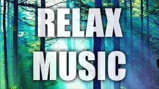 1 Hour Lullaby Sleep Study Music Relax Meditation Birds Nature Spa Zen