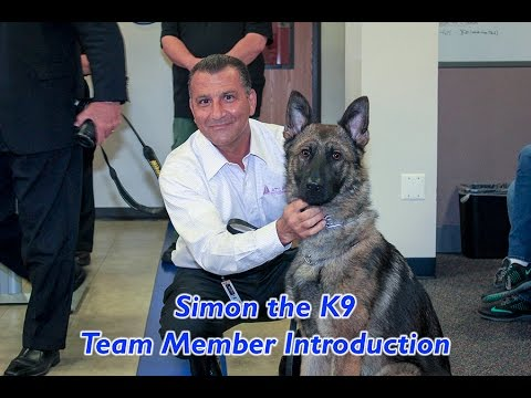 "Introducing ""Simon"", the newest member of the Taylor Police Department"