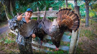 2 Osceola Long Beard Gobblers with 1 Shot! {Catch Clean CooK}