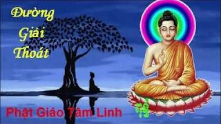 Phật Giáo  - Tụng Đường Giải Thoát - Giải trừ phiền não gúp tâm thanh tịnh