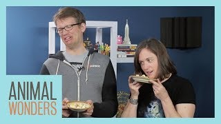 Animal Food Taste Test with Hank & Katherine Green