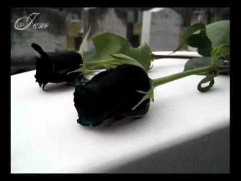 julio jaramillo - mis flores negras - pasillos de oro