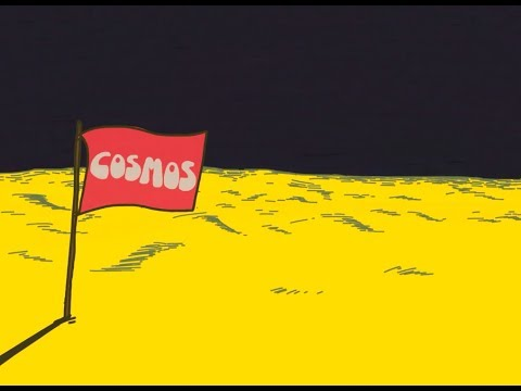 フリージアン - COSMOS