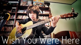 Pink Floyd - Wish You Were Here (Cover by Feng E)