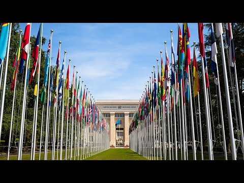 UN at 75: Multilateral dialogue and win-win cooperation