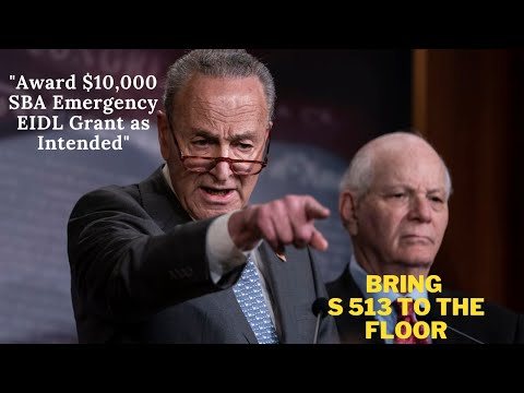 """""""Schumer, Where's My EIDL"""" From Vegas with Love"""